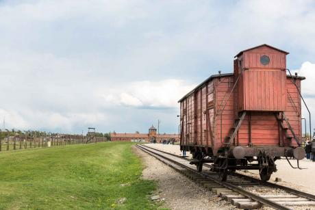 Railway Wagon For Prisoners Auschwitz